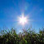土地の有効活用!コインランドリー経営×太陽光発電は素敵な関係